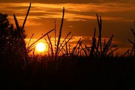 Bildergebnis für Sonnenuntergang