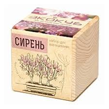 Набор для выращивания <b>ЭКОКУБ ECB</b>-<b>01</b>-<b>06 Сирень</b> — купить в ...