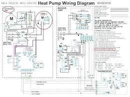diagram of animal cell for class 8 york heat pump thermostat wiring diagram of digestive system easy york heat pump thermostat wiring diagrams