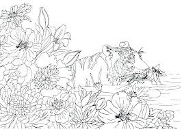 nature colouring pages for adults.  Pages Beautiful Nature Coloring Pages For Trend Cute Adults Page To Print  Print With Colouring R