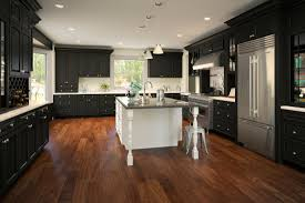 Pre Assembled Kitchen Cabinets Ready To Assemble Kitchen Cabinets Canada Asdegypt Decoration