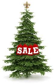 Christmas Tree Sale! treesale2 Sale | Troop 79 - Scouting Home