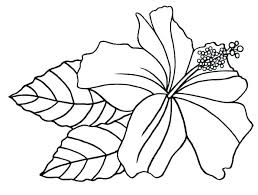 Flowers Coloring Pages Printable Flower Coloring Pages Printable
