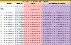 Clean Obesity Scale Chart For Women Bmi Chart With Obesity
