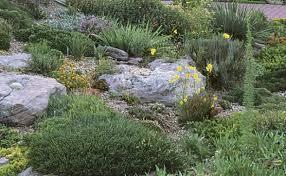 rock garden primer