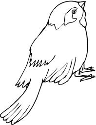 Kleurplaat Ijsvogel Gratis Malvorlagen Eisvogel Grossformat
