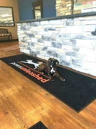 best flooring for dogs good flooring for dogs motion best wood dog vinyl flooring dogs