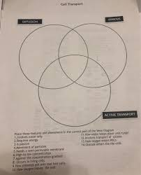 Venn Diagram Diffusion And Osmosis Solved Cell Transport Diffusion Osmosis Active Transport
