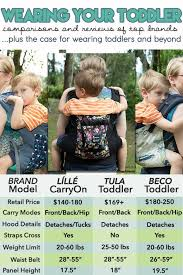 Lillebaby Carryon Tula Todder And Beco Toddler Carrier