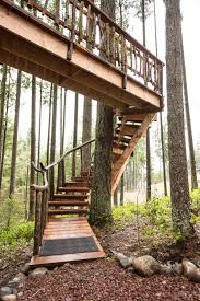 treehouse furniture ideas. Safari Treehouse Stairway Furniture Ideas