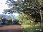 imagem de Morrinhos do Sul Rio Grande do Sul n-2