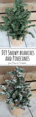 Pine Branches For Decoration Diy Snow Covered Branches And Pine Cones Clean And Scentsible