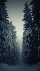 snow wallpaper iphone 6. Brilliant Wallpaper Snow Forest Lonely Walk IPhone 6 Plus HD Wallpaper In Iphone