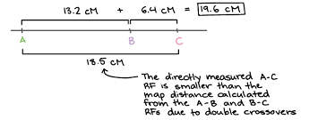 Gene Mapping Problems Genetic Linkage Mapping Article Khan Academy