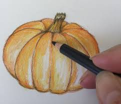 pumpkin drawing with shading. light brown can be used to show shadow around the stem, at bottom, and in creases. don\u0027t worry, pumpkin is not perfect. drawing with shading