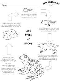 5f824a1646460d686cf538377deb0ce5 frog activities frog life cycles 23 best images about frog life cycle on pinterest writing on writing checks worksheet