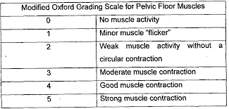 Mmt Grades Manual Muscle Testing Grading Scale