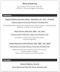 example of resume layout resume layout example