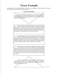 Nature Essay Examples Informal Essay Example A Nature Walk Abusiness