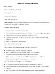 Sample OEM Account Manager Resume Template