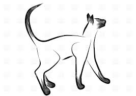Sketched Siamese Cat Stock Vector Image