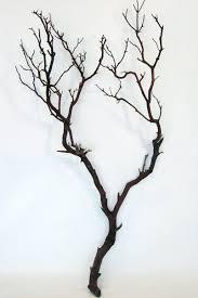 Dark Reddish Brown Manzanita Branch 24-38in