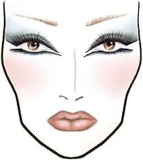 1700 makeup face charts mac pro cosmetics manual cd dvd