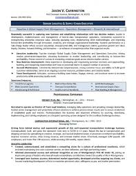 district manager resume essay writing service by the it senior senior technical it manager resume example resume sample for senior operations manager resume examples senior it