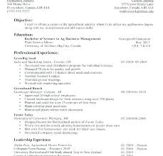 Resume Template Examples Adorable Resume Templates First Job Putasgae