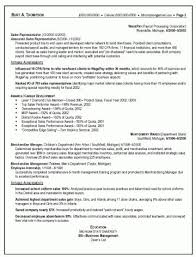 Resume For Sales Representative Gorgeous Sales Representative Duties And Responsibilities Resume From