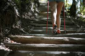 Walking Logs Woman With Walking Sticks On Ladder Of Logs Stock Photo Picture And