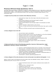 Sample Of Synthesis Essay Essay Sample Synthesis