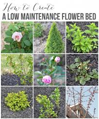 how to create a low maintenance flower bed these are great basic tips and