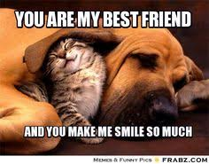 BFF funny on Pinterest | Best Friend Meme, Emojis and Best Friend ... via Relatably.com
