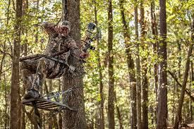 summit treestands best climbing tree stand