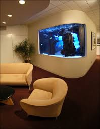 office aquariums. Brilliant Aquariums We Embedded This Large Aquarium Into The Wall Of A Waiting Room Matching  Curvature For Dramatic Look And Office Aquariums O