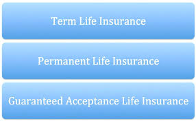 aarp life insurance quotes also prudential