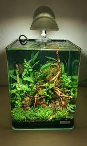 Nano Aquarium Design Nano Cube 10l Aquarscape Nano Aquarium Fish Aquarium