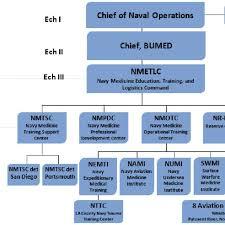 Nmetlc Organization Chart Download Scientific Diagram