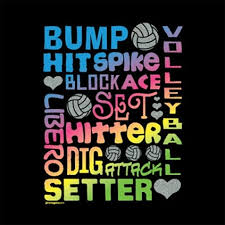 Volleyball Quotes Amazing Volleyball Quote Quote Number 48 Picture Quotes