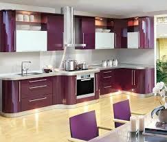 ... Delightful Purple Modern Kitchen Purple And Pink Kitchen Colors Adding  Retro Vibe To Modern ...