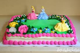 Ideas Enchanting Walmart Birthday Cakes For Cute Child Party Ideas