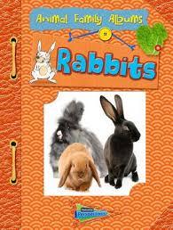 Animal Photo Albums Magrudy Com Rabbits Animal Family Albums