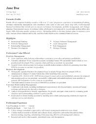 Pleasing Professional Resume Writers New York For Your Resume