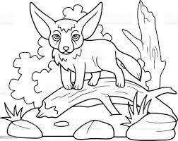 Fox Fenech - Immagini vettoriali stock e altre immagini di Animale - iStock