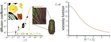 Diffusion and flow in complex <b>liquids</b> - Soft Matter (RSC Publishing)