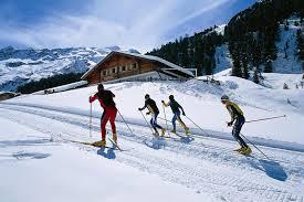 История беговых лыж Современный лыжный спорт это 39 лыжных дисциплин