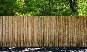 landscape forest fence wood wall walkway natural divider garden picket fence security outdoors woods horizontal bamboo