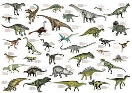 Pin By Judy Hanses On Dinosaurs Dinosaur Drawing Dinosaur