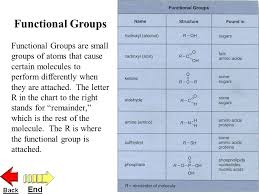 Functional Groups Chart Macromolecules Carbohydrates Lipids Nucleic Acids Proteins